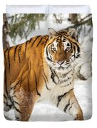 Eye Of The Tiger Duvet Cover