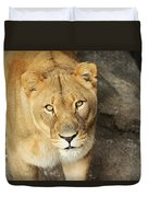 Eyes Of The Lioness Duvet Cover