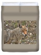 Face Of The American Coyote Duvet Cover