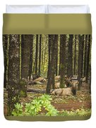 Faces In The Woods Duvet Cover