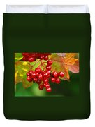 Fall Berries 2 Duvet Cover