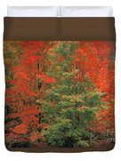 Fall Brilliance Duvet Cover