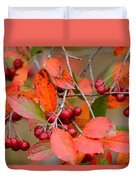 Fall Color 1 Duvet Cover