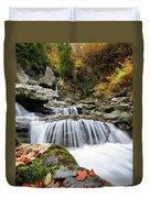 Fall Color Bash Duvet Cover