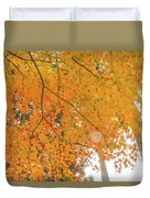 Fall Color Maple Leaves At The Forest In Aichi, Nagoya, Japan Duvet Cover