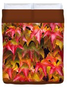 Fall Colored Ivy Duvet Cover