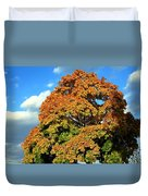 Fall Colors 19 Duvet Cover