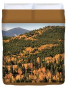 Fall Colors At Rocky Mountain National Park Duvet Cover