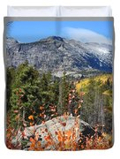 Fall Colors In Rocky Mountain National Park Duvet Cover