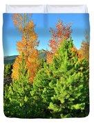 Fall Comes To Dillon Colorado Duvet Cover