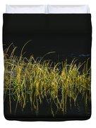 Fall Grasses - Snake River Duvet Cover