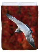 Fall Gull Duvet Cover