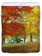 Fall In Kaloya Park 9 Duvet Cover