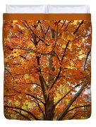 Fall In Kayloya Park 2 Duvet Cover