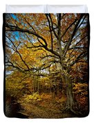 Fall In Pennsylvania Duvet Cover