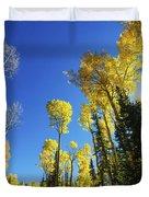 Fall Light Duvet Cover