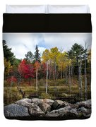 Fall Scene 4 Duvet Cover