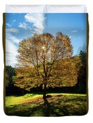 Fall Tree Silhouette Kent Falls State Park Connecticut Duvet Cover