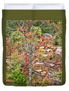 Fall Tree With Intense Colors Duvet Cover