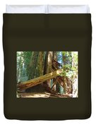 Fallen Redwood Trees Forest Duvet Cover