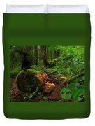 Fallen Trunk Duvet Cover