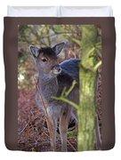 Fallow Deer Fawn Duvet Cover