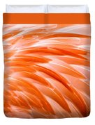 Fan Of Feathers Duvet Cover