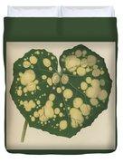 Farfugium Grande  Leopard Plant, Green Leopard Plant Duvet Cover