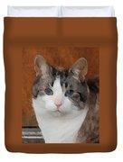 Fat Cats Of Ballard 3 Duvet Cover