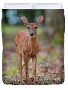 Fawn In Woods At Shiloh National Military Park Duvet Cover