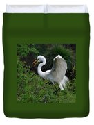 Feather 8-8 Duvet Cover