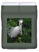 Feather 8-9 Duvet Cover