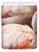 Feathers Of Flamingo Duvet Cover
