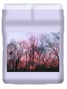 February At Twilight Duvet Cover