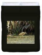 Feeding Squacco Heron Duvet Cover