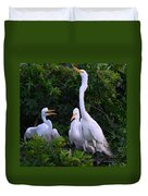 Feeding Time In The Great White Egret Rookery Duvet Cover