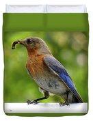 Female Bluebird Feeding Her Brood Duvet Cover