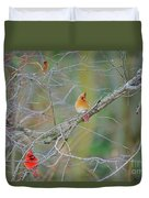 Female Cardinal And Friends Duvet Cover
