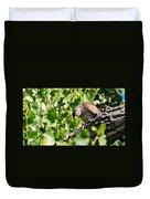 Female Cooper's Hawk Feeding Duvet Cover