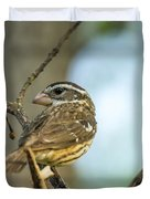 Female Grossbeak Looking Back Duvet Cover