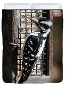 Female Hairy Woodpecker Duvet Cover