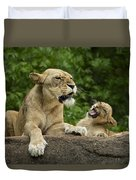 Momma Lion Over Cubs Attitude Duvet Cover