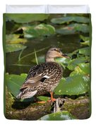 Female Mallard Among Lily Pads Duvet Cover