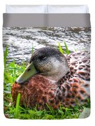 Female Mallard Duck Resting 4 Duvet Cover