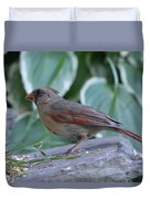 Female Northern Cardinal  Duvet Cover