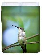 Female Ruby Throated Hummingbird Duvet Cover