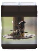 Female Sparrow On Birdfeeder Duvet Cover
