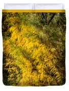 Fens In Fall Color Duvet Cover