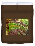 Fern Branch Leaves Art Prints Forest Ferns Natures Baslee Troutman Duvet Cover