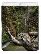 Fern Canyon Creek Duvet Cover